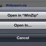 winzip ss