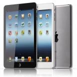 12.10.04 iPadmini 1