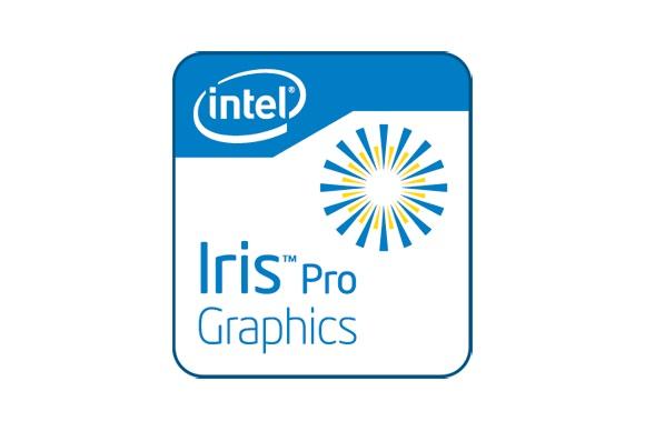 iris pro logo 100066889 large