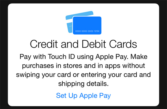 Apple Pay Credit Card Details 3